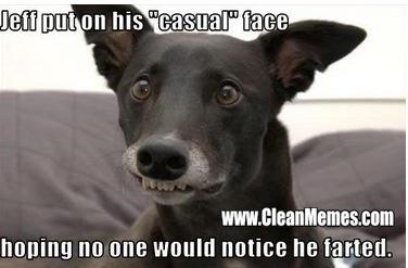 28142_casualface the humor hub animal memes hobbies humour