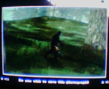 Le tronçonneur.. Loisirs - Jeux vidéo -
